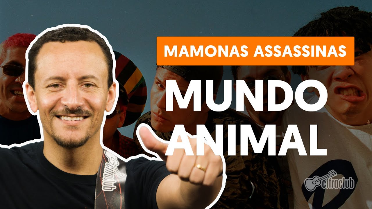 como tocar no baixo mundo animal